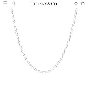 Tiffany and co oval link sterling silver chain